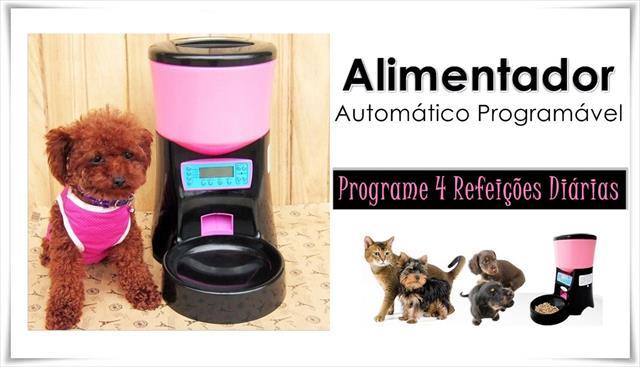 alimentador automático  programável