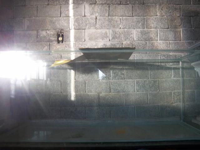 aquario 360l