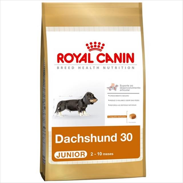 ração royal canin mini dachshund junior - 3kg