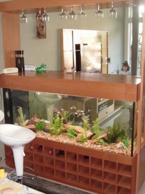 aquários - montagem, conserto e reforma