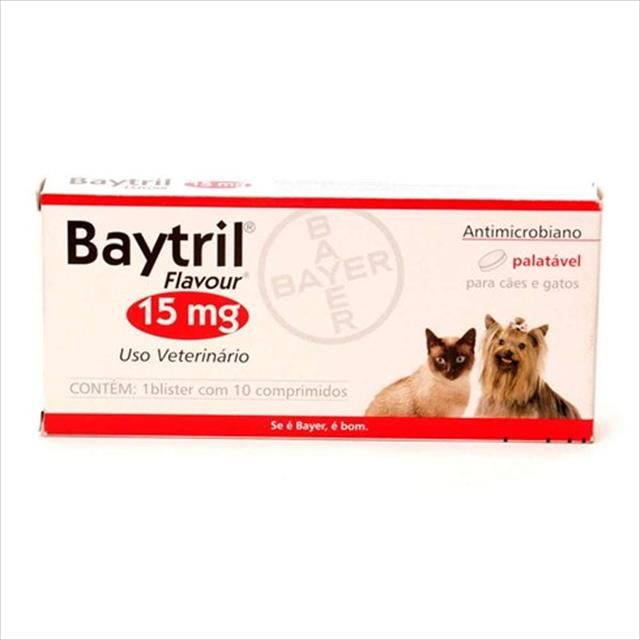 antibiótico bayer baytril flavour 15mg - 10 comprimidos