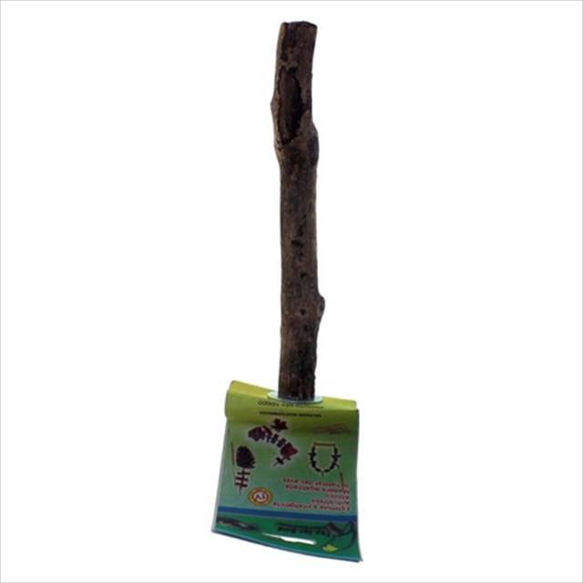 brinquedo toy for bird poleiro parafuso - tam m