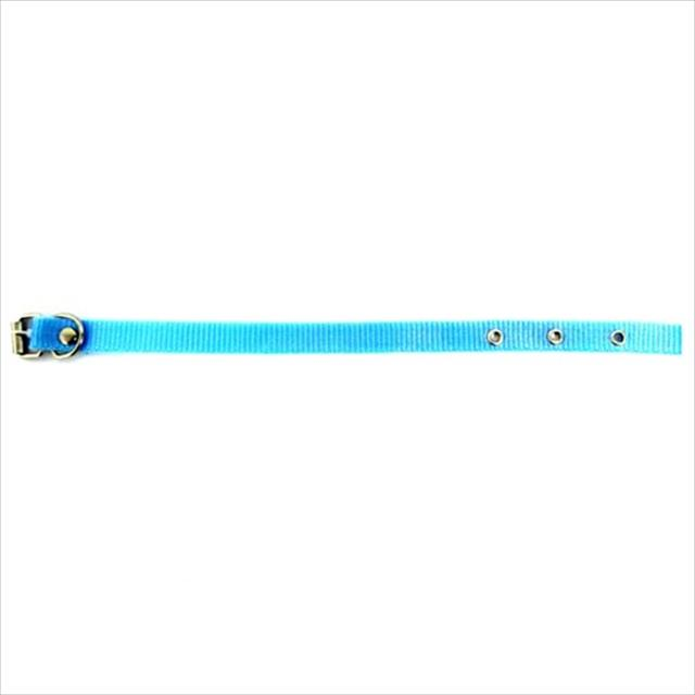 coleira de seda simples furacão pet - azul coleira de seda simples azul 15mm - tam 0