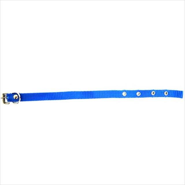 coleira de seda simples furacão pet - azul coleira de seda simples azul 15mm - tam 3