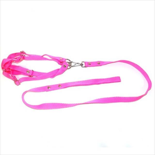 conjunto guia de seda com peitoral furacão pet - rosa conjunto guia de seda com peitoral rosa - grande