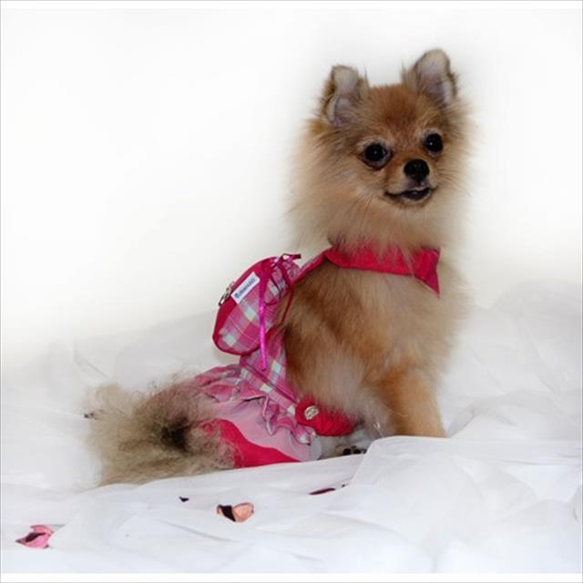 jardineira feminina - pink jardineira feminina pink - tam 01