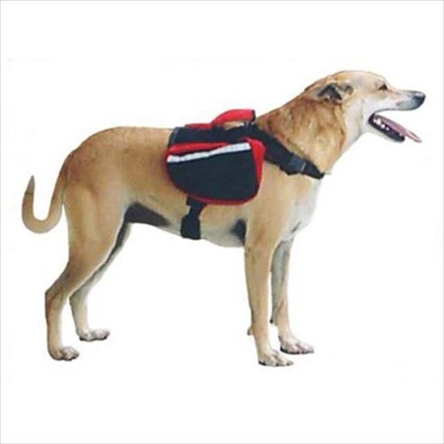 mochila galileos club tracking pet - vermelho mochila galileos club tracking pet vermelho - grande