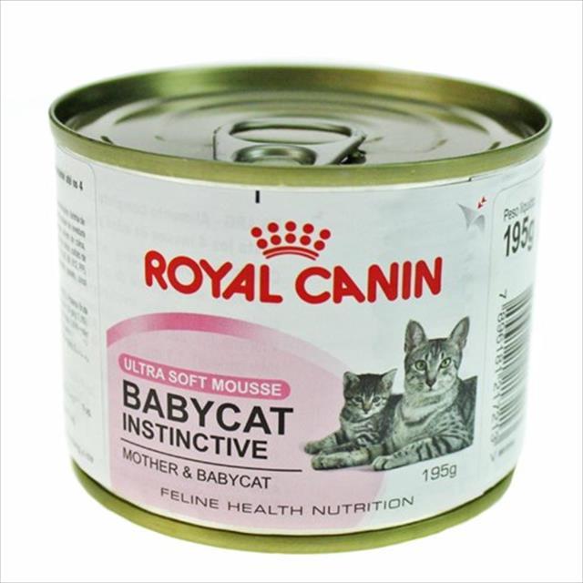 ração royal canin lata baby cat instinct wet para gatos filhotes - 195 g