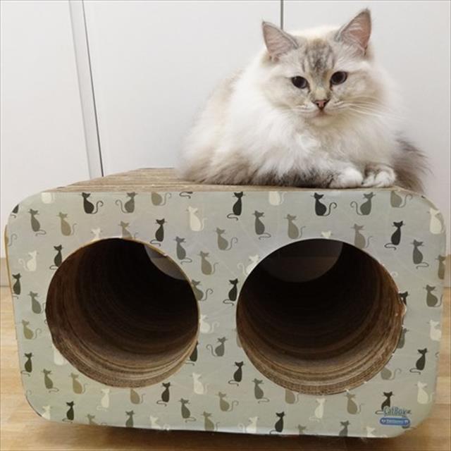 brinquedo arranhador pet games cat box duplo - gatinho