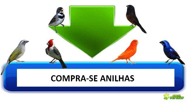 compro anilhas