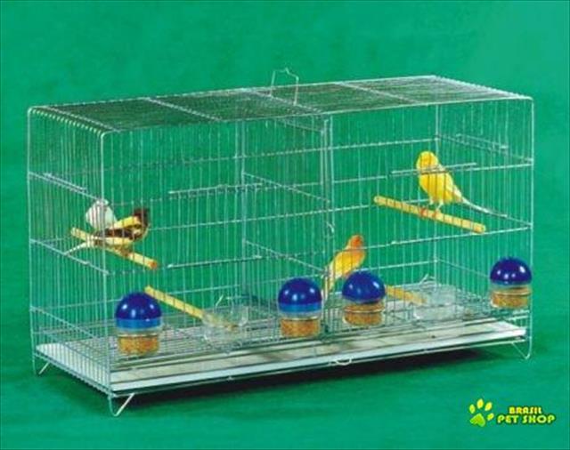 gaiolas criadeira para canário